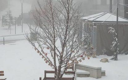 Εντυπωσιακές ΦΩΤΟ από το χιονισμένο Σέλι