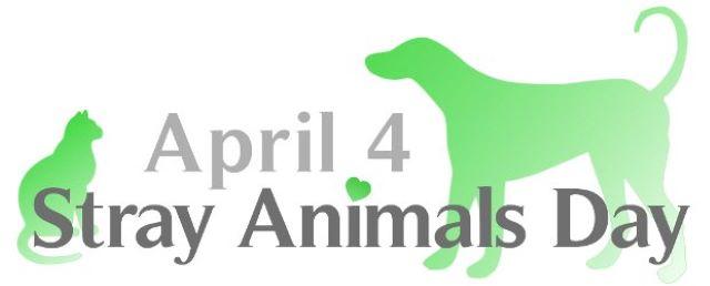 Παγκόσμια Ημέρα Αδεσπότων Ζώων