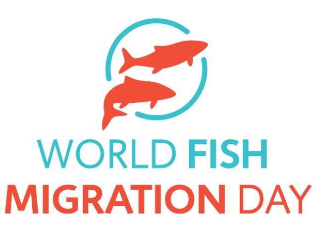 World_Fish_Migration_Day