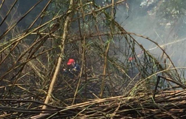Τώρα στις Σέρρες – Μεγάλη φωτιά πίσω από τα ΚΤΕλ