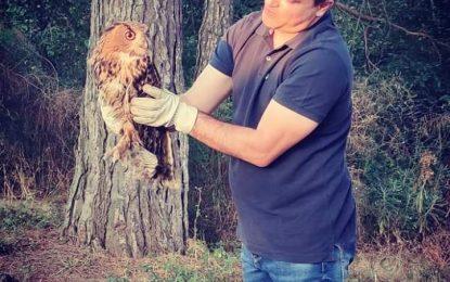 Αγάπη για τη φύση: επέστρεψε στο φυσικό του περιβάλλον, ένας μπούφος που είχε τραυματιστεί(Φωτογραφίες)