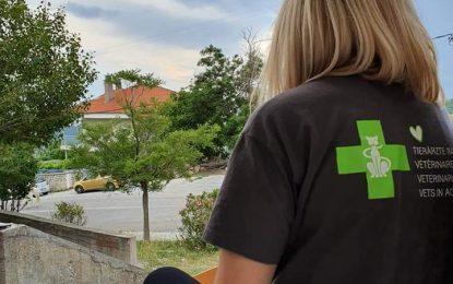 Φιλοζωικός Όμιλος Σερρών και Vets In Action. Πρόγραμμα δωρεάν στειρώσεων αδέσποτων ζώων στις Σέρρες.