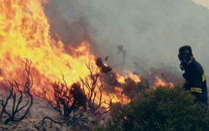 Ξέσπασε φωτιά δίπλα σε σπίτια  στη Λαμία