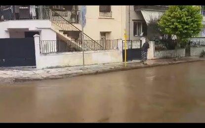 Σέρρες: Δεκάδες πλημμυρισμένα σπίτια πίσω από τον Ξενία – Εγκλωβισμένα στο νερό αυτοκίνητα