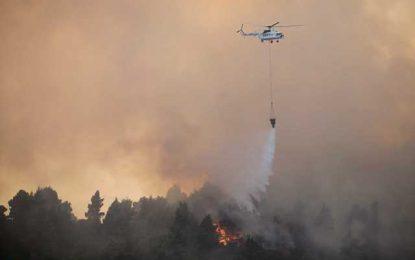 Μεγάλη φωτιά στην Εύβοια(Εικόνες)