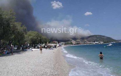 Φωτιά στις Κεχριές Κορινθίας – Απίστευτες εικόνες! Ενισχύονται οι δυνάμεις(Εικόνες&Βίντεο)