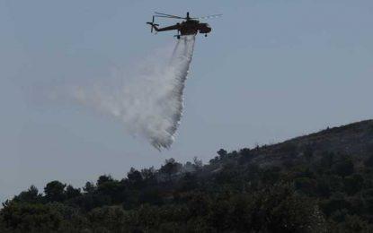 """Κεφαλονιά: Ολονύχτια """"μάχη"""" με τις φλόγες – Επέστρεψαν στα σπίτια τους οι κάτοικοι στο Καπανδρίτι"""