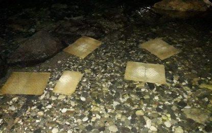 Πάρος: Πετρελαιοκηλίδα και νεκρά ψάρια στον κόλπο της Παροικιάς! Οι εικόνες που προκάλεσαν συναγερμό (Εικόνες)
