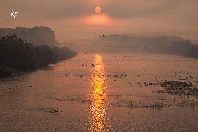 Σέρρες: Πανέμορφες εικόνες- Ανατολή του ήλιου στην λίμνη Κερκίνη (Εικόνες)