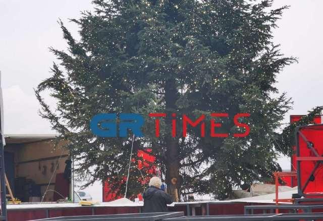 Θεσσαλονίκη: Έτσι στολίζονται τα χριστουγεννιάτικα δέντρα στην πλατεία Αριστοτέλους(Βίντεο)