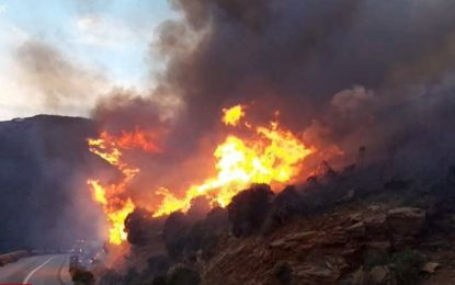 Ανδρος: «Θα βάλω φωτιά» είχε πει πρόεδρος κοινότητας του νησιού!